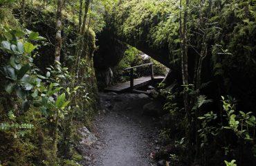 sendero laguna Témpanos