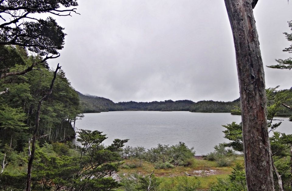 Trekking Laguna los Pumas